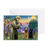 St Francis & Briard Pair Greeting Cards (Pk of 20)