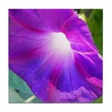 Purple Petunia Art Tile