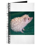 Beron the Hedgehog Journal