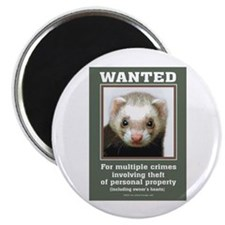 Ferret Wanted Poster Magnet