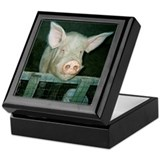 Boss Hog Keepsake Box