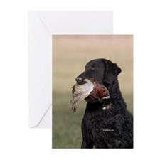 Curly Coated Retriever-6 Greeting Cards (Pk of 10)