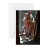 Hairless Kitty loves fur Greeting Cards (Pk of 20)