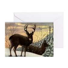 Stag Greeting Cards (Pk of 10)
