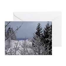 Winter Home Greeting Cards (Pk of 20)