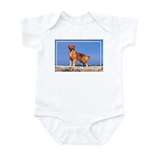 Golden Retriever-5 Infant Bodysuit