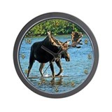 Moose Basic Clocks
