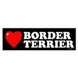 BORDER TERRIER Bumper Bumper Sticker