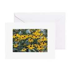 Greeting Cards (Pk of 10) - Black-eyed Susans