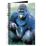 Silverback gorilla Journal