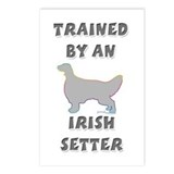 Irish Setter Slvr Postcards (Package of 8)