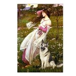Windflowers / G-Shep Postcards (Package of 8)