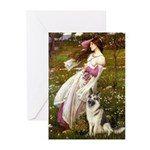 Windflowers / G-Shep Greeting Cards (Pk of 10)