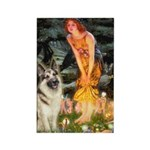 Fairies / G-Shep Rectangle Magnet (10 pack)