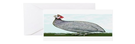 Lavendar Guinea Greeting Cards (Pk of 10)