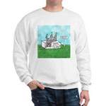 Agility Pause for the Cause! Sweatshirt