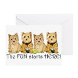 Norwich Terrier Fun Greeting Cards (Pk of 10)
