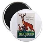 Prevent Forest Fires Magnet