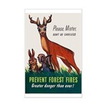 Prevent Forest Fires Mini Poster Print