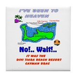 Cute Cayman brac Tile Coaster