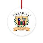 Wizard U Alchemy RPG Gamer HP Ornament (Round)