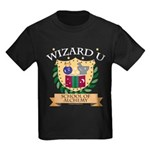 Wizard U Alchemy RPG Gamer HP Kids Black T-Shirt