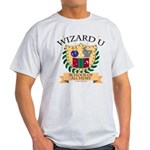 Wizard U Alchemy RPG Gamer HP Grey T-Shirt