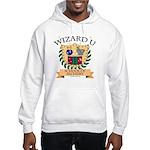 Wizard U Alchemy RPG Gamer HP Hooded Sweatshirt