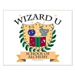 Wizard U Alchemy RPG Gamer HP Small Poster