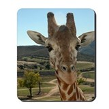 """You Called?"" - Curious Giraffe Mousepad"