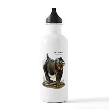 Mandrill Water Bottle
