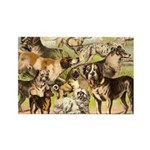 Dog Group From Antique Art Rectangle Magnet (10 pa