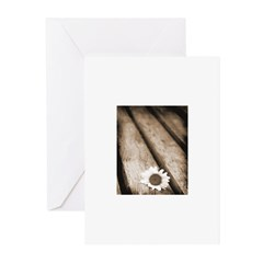 Daisy on Bench Greeting Cards (Pk of 20)