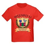 Wizard U Alchemy Gamer RPG HP Kids Red T-Shirt