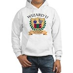 Wizard U Alchemy RPG Gamer HP Hooded Sweatshirt