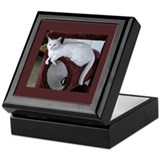 TURKISH VAN CAT Keepsake Box