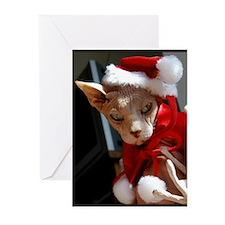 hairless cat as Santa Greeting Cards (Pk of 20)