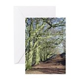 Road Not Taken Greeting Card
