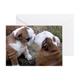 Cute Bulldog puppy Greeting Card