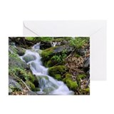 Cool Rivers and creeks Greeting Cards (Pk of 10)