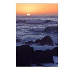 Cute Wave surfing Postcards (Package of 8)