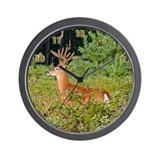 12 Point Buck Wall Clock