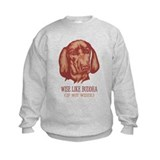 Redbone Coonhound Jumpers