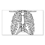 Rib Cage Rectangle Decal