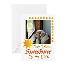 Bulldog Greeting Cards (Pack of 6)