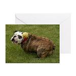 English Bulldog Greeting Cards (Pk of 10)