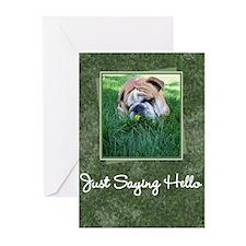 Hello Bulldog Greeting Cards (Pk of 10)