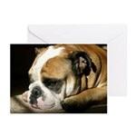 A Soft Moment Greeting Cards (Pk of 10)