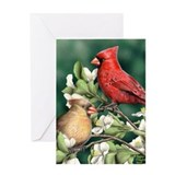 Wild Cardinals Greeting Card