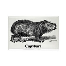 Capybara Rectangle Magnet